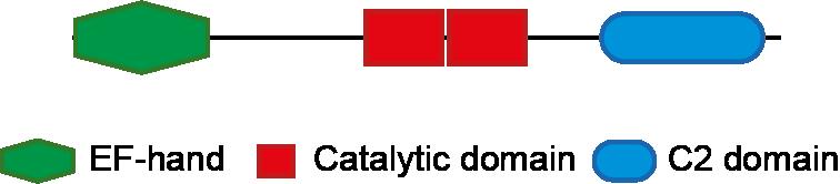 chematics PLC